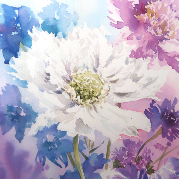Scabious, a card by Julie King
